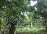 858064d5afcitymax_sd2