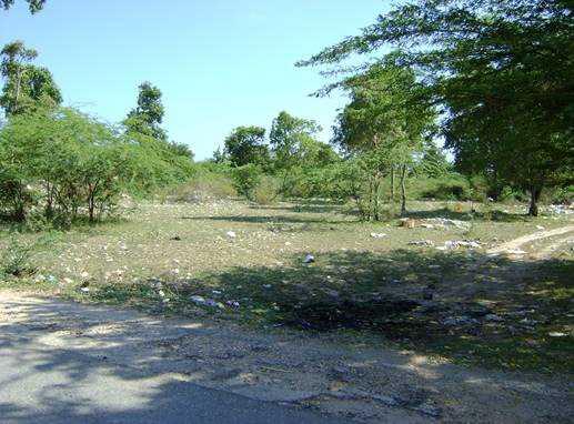 CityMax Vende Amplio Terreno en Pedernales