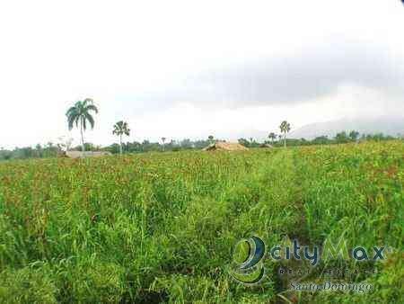 terreno-en-venta-en-jarabacoa-republica-dominicana-1-655